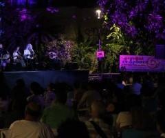 """Ολοκληρώθηκε το φεστιβάλ """"εν δράσει: η δύναμη της μη-βίας"""""""